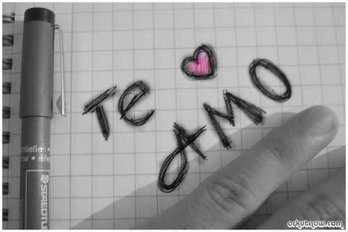 Dizer que te Amo